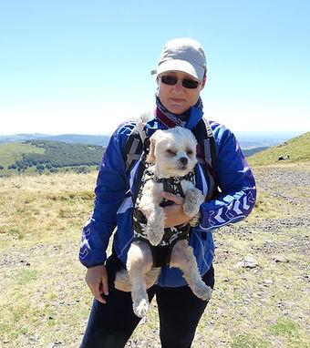Isabelle, naturopathe pour chiens et chats, iridologie, soins énergétiques, viande crue surgelée