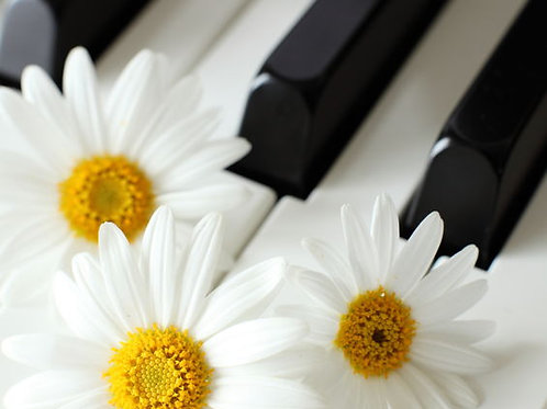 Summer Continuing Piano