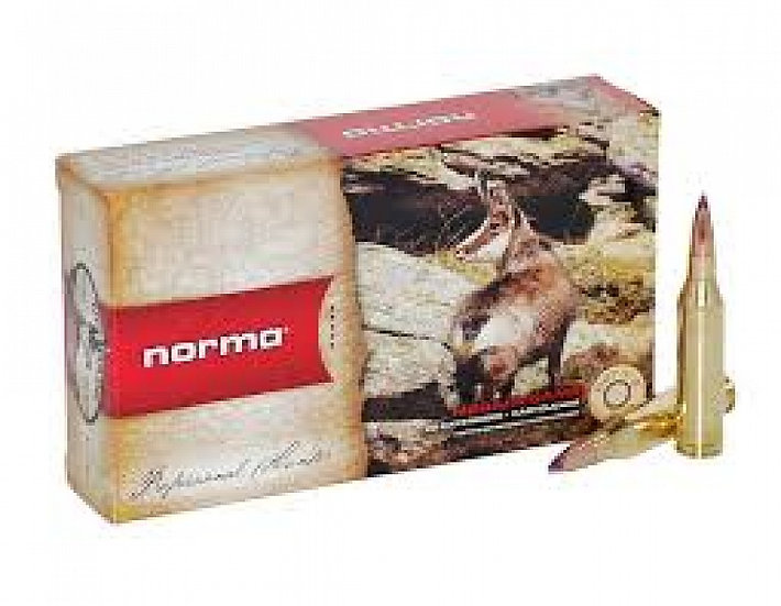 243 Win. Norma Soft Point 6,5g/100gr golyós lőszer