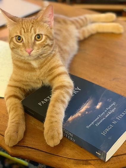 Photo Cat Book.jpg