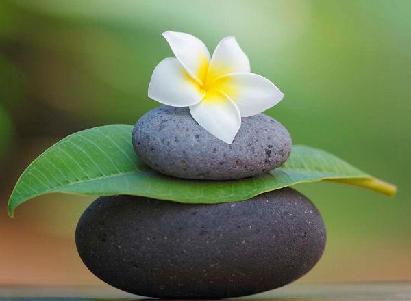 meditation.rocks.petal.jpg