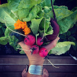Nutrient dense bouquets, are my kind of bouquets!_#growyourownfood #gardentotable #backyardgarden #s
