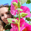 hollyhock from seed to skin and hair