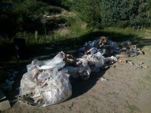 Comenzarán a aplicarse multas a quienes tiren basura en calles, rutas, río y lago de Potrero y otras