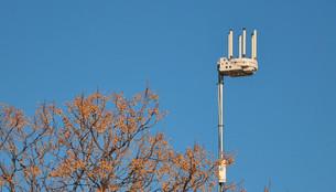 """WIFI: De manera inmediata se colocarán antenas enfrente de  boxes y se reforzarán aquellos lugares"