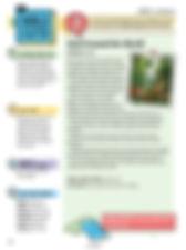 Conversation Guide 1-3rd .jpg