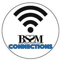 BSSm Connections.png