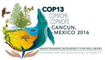 COP13 biodiversité