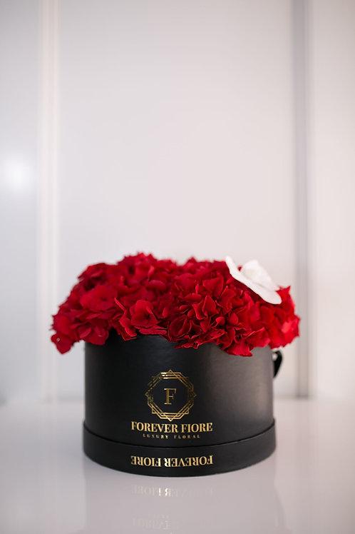 Amore black Box with Red Hydrangeas