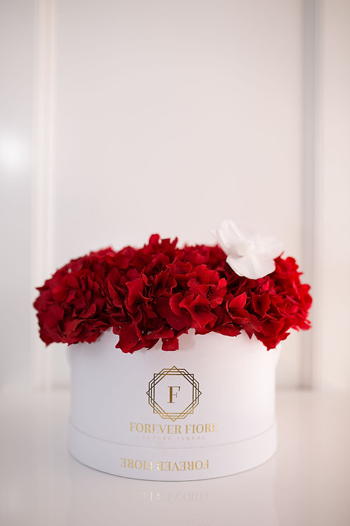 Amore White Box with Red Hydrangeas