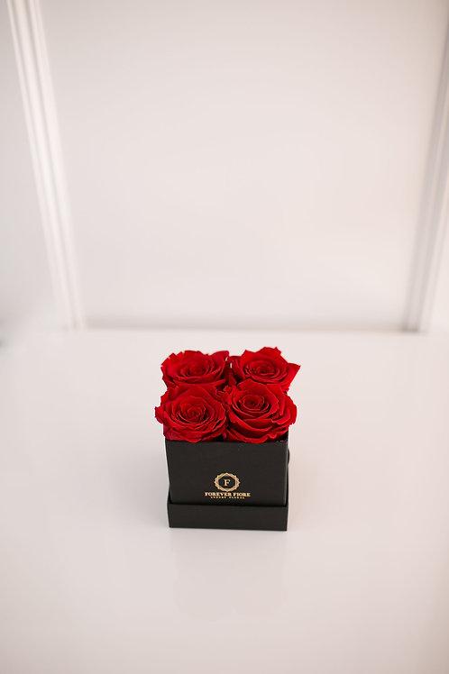Emma Black Box