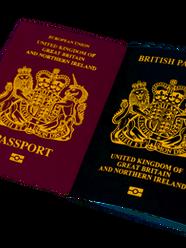 Я достаю из широких штанин… или как получить гражданство Великобритании