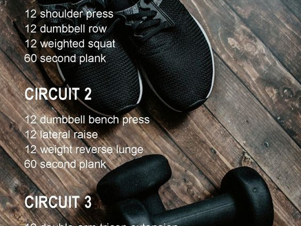 Holiday Survival: Full Body Dumbbell Workout
