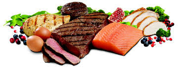 Protein: Building Block for Health