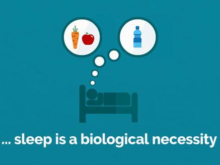 Sleep - is it overrated?