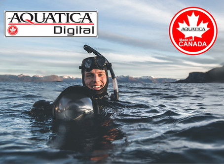 AQUATICA | Fotografía Profesional bajo el agua!