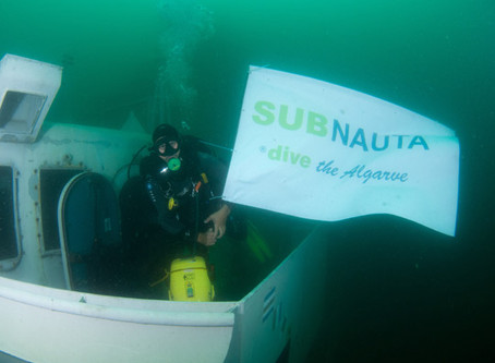 Ocean Revival | SUBNAUTA