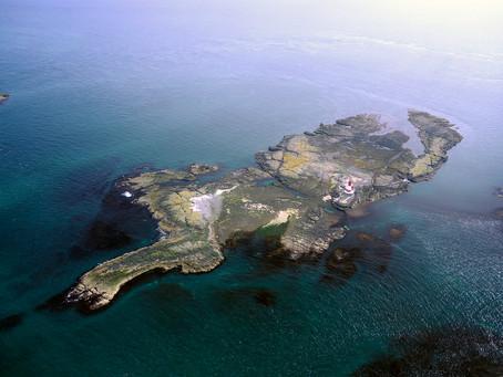 Farne - Mar del Norte