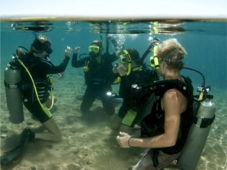 Curso Open Water SCUBA Diver