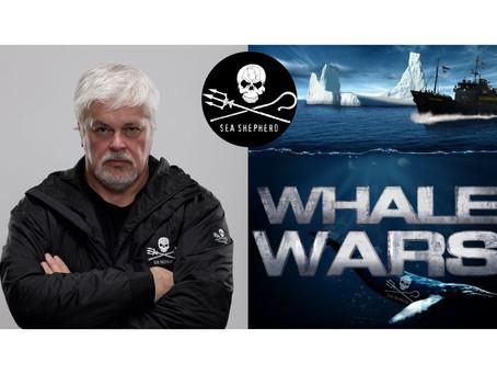 Paul Watson | Pastor del Mar