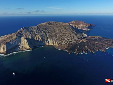 Bucear en las Islas de Revillagigedo