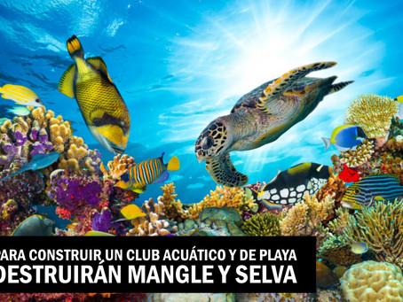 Piden frenar proyecto turístico en Cozumel