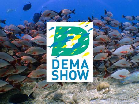 DEMA SHOW 2020