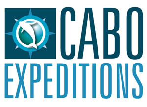 CABO EXPEDITIONS | Cabo San Lucas, BCS.