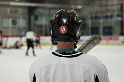 Elevated Hockey Player