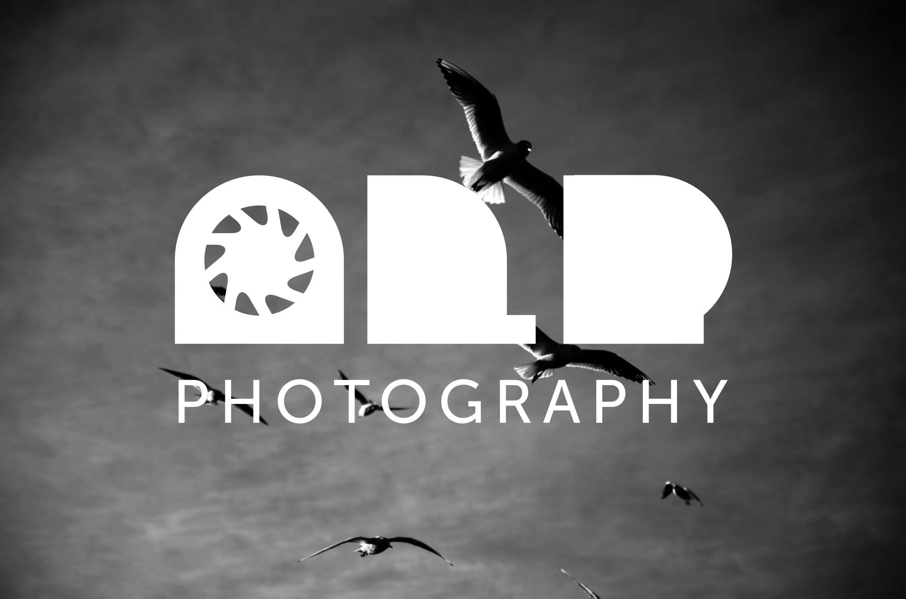 BRAND DESIGN AnitaLozzaPhotography