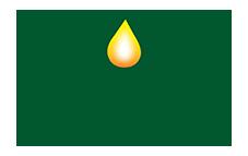 logo-web-4.png