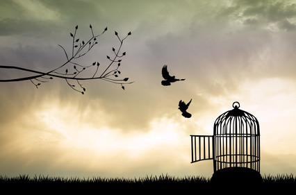 להיות חופשי