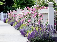 giardinaggio-alla-rotonda-Grandate-105-6
