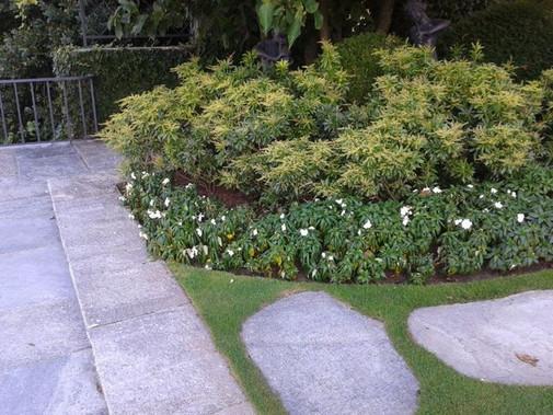 giardinaggio-alla-rotonda-Grandate-032-6