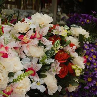 giardinaggio-alla-rotonda-Grandate-028-6