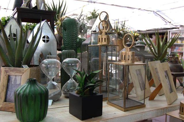 giardinaggio-alla-rotonda-Grandate-070-6