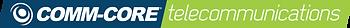 Telecommunications Service Main Logo.png