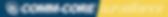 Surveillance Service Main Logo.png
