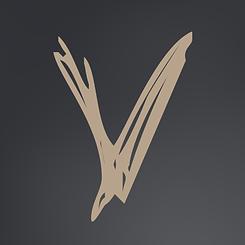 VFF20 - V.png