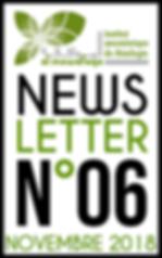 NEWSLETTER-AL-MOWAFAQA-6.png