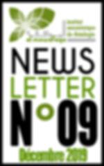 Bouton newsletter site.jpg