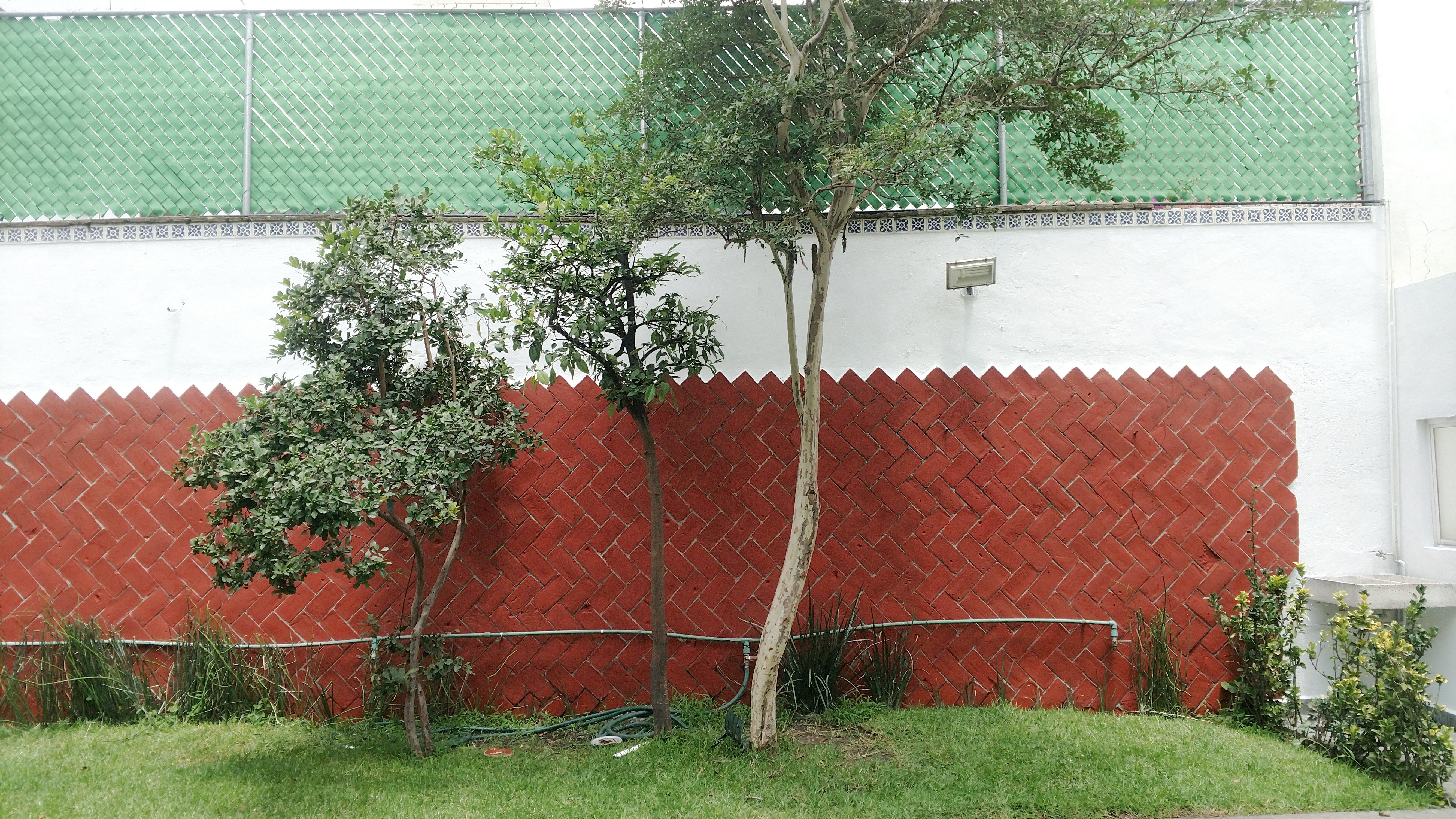 Col. Portales - CDMX