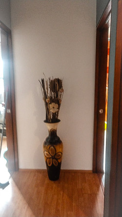 Lomas de Tarango, CDMX