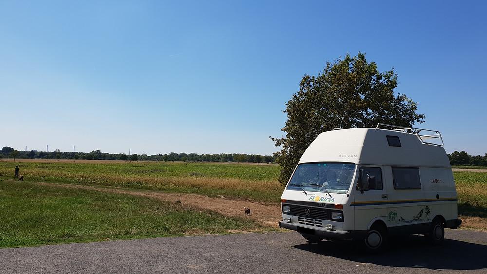 Import Auto Allemagne - Auto Convoi Allemagne - Volkswagen LT 31 Westfalia Florida 2.4D 69ch