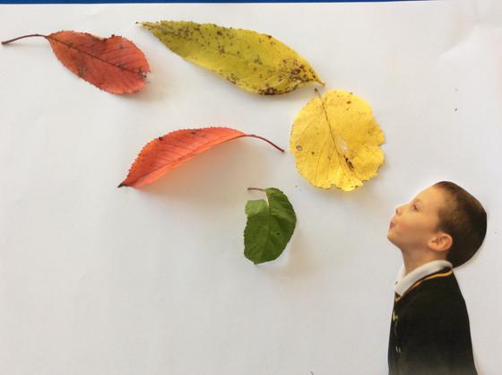 Reception Leaf Blowing