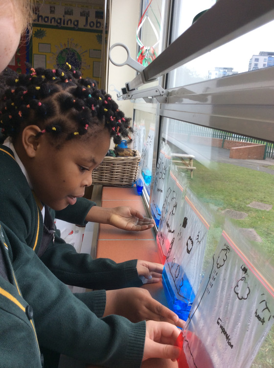 Watching our water cycles