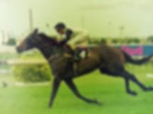 Image+17+-+Better+Loosen+Up+wins+Segenho