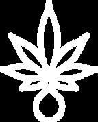 plant_&_drop_WHTAsset 4.png
