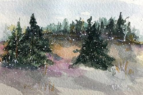 Winter Woodland 5