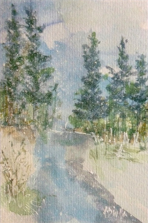 Winter Woodland 17